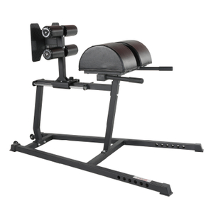 High Quality Gym Glute Ham Developer BG001 -Vigor