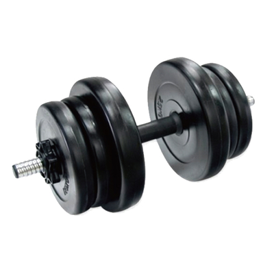China Tone Exercise 10KG Cement Dumbbell Set Vigor - DBS-C-401