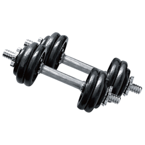 China Certificated Fitness Center 15KG Dumbbell Set Vigor - DBS-I-103